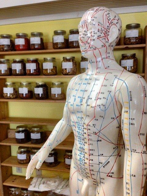 Lees meer over het artikel Bij welke klachten wordt acupunctuur ingezet?